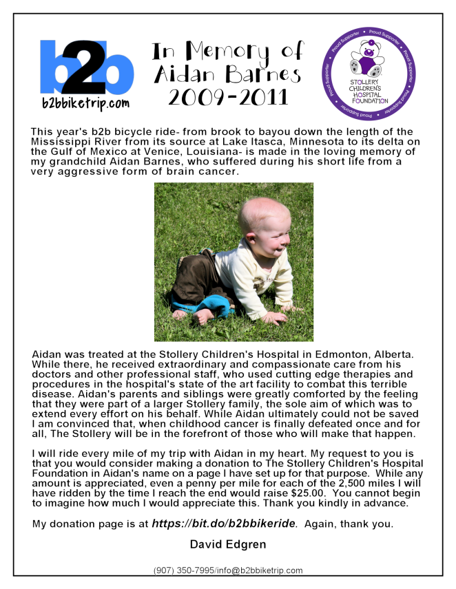 Aidan Fundraising Poster Draft for Review Revised